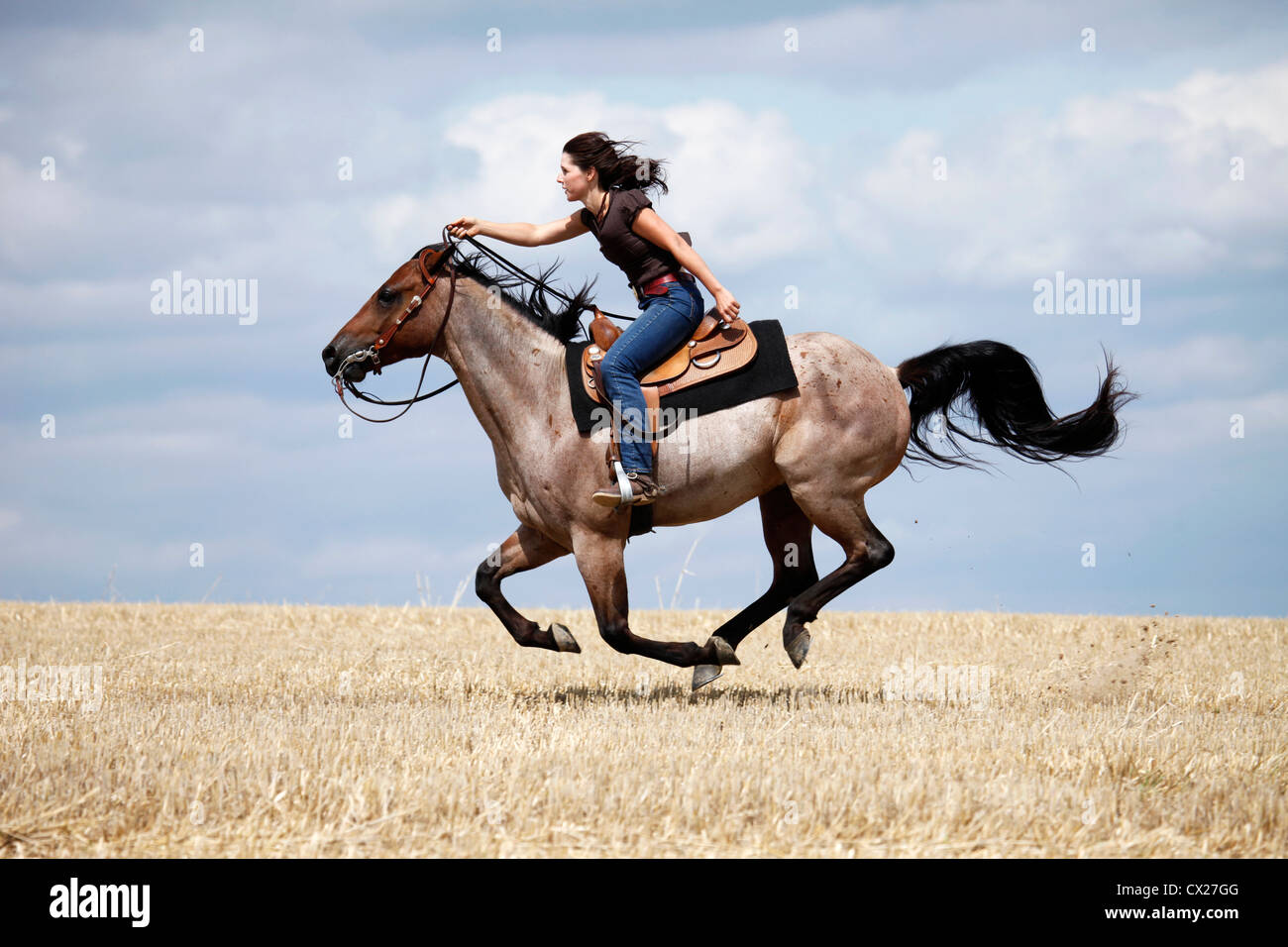 Western Riding Horsewoman Stock Photo Alamy