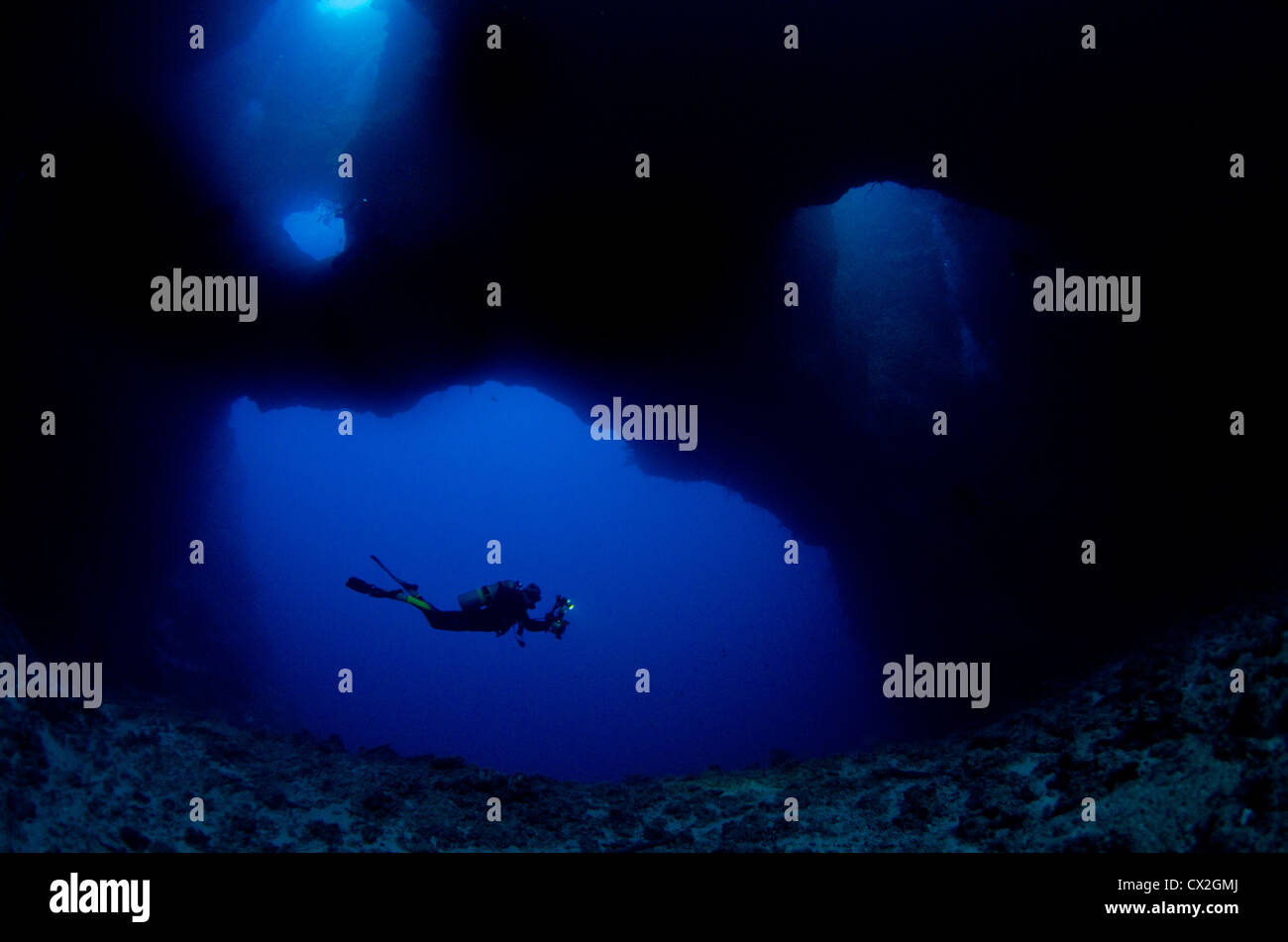 underwater scene of Palau, coral reefs, cave, cavern, diver, silhouette, scuba, diving, blue water, clear water, - Stock Image
