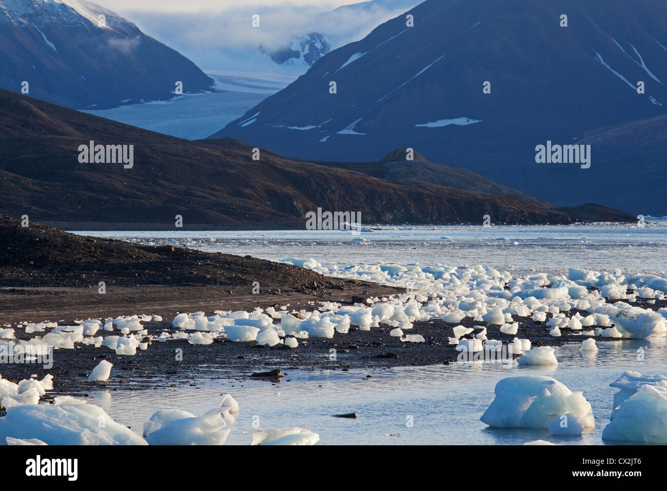 Chunks of ice from glacier washed ashore on beach at Svalbard, Spitsbergen, Norway - Stock Image
