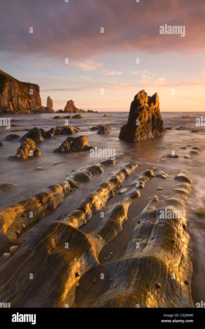 Golden evening sunlight bathes the rocks and ledges at Bantham in the South Hams, Devon, England. Autumn (September) - Stock Image