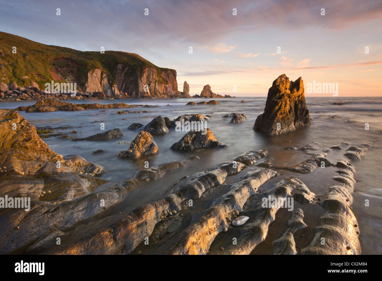 Golden evening sunlight bathes the rocks and ledges at Bantham in the South Hams, South Devon, England. Autumn (September) - Stock Image