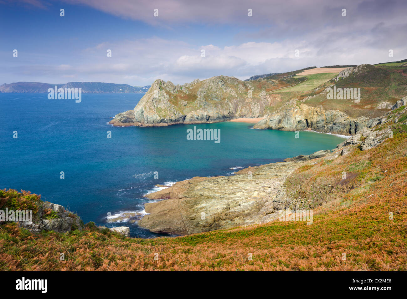 Looking towards Elender Cove and Gammon Head from the South West Coast Path footpath near Prawle Point, South Hams, - Stock Image