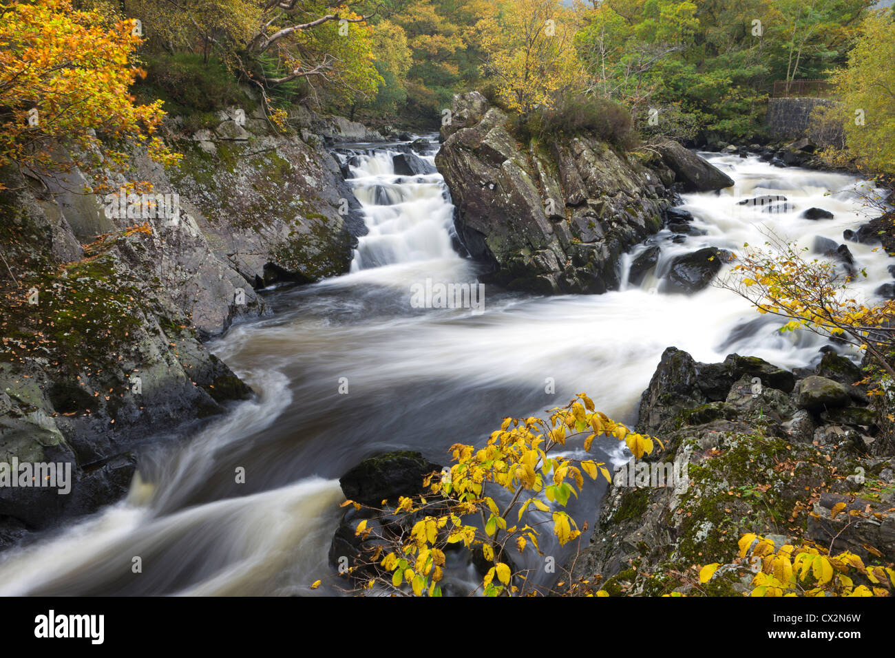 Autumn foliage surrounds the river Garbe Uisge at the Falls of Leny near Callander, Stirling, Scotland. Autumn (October) - Stock Image