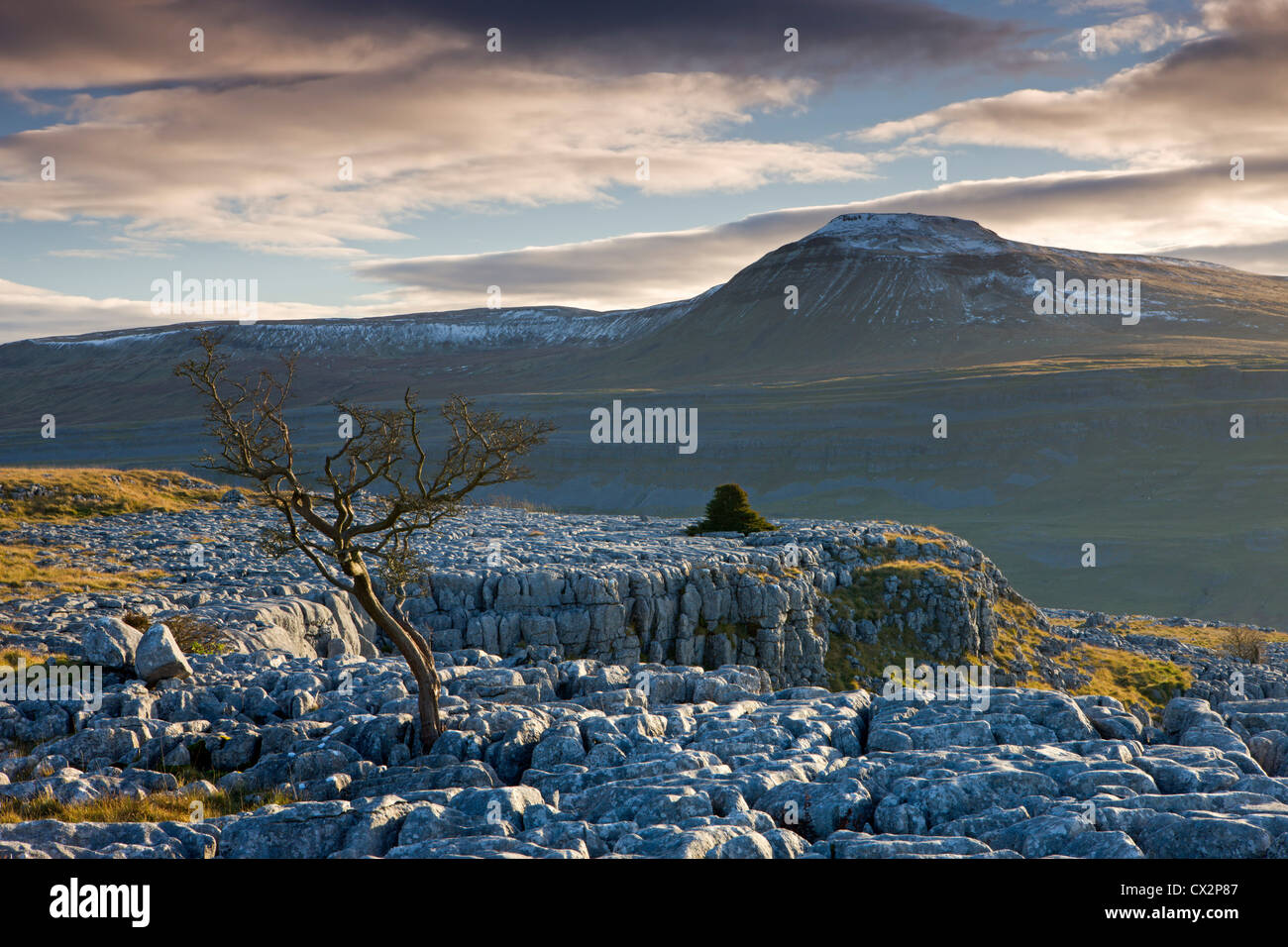 Snow capped Ingleborough from the limestone pavements on Twistleton Scar, Yorkshire Dales - Stock Image