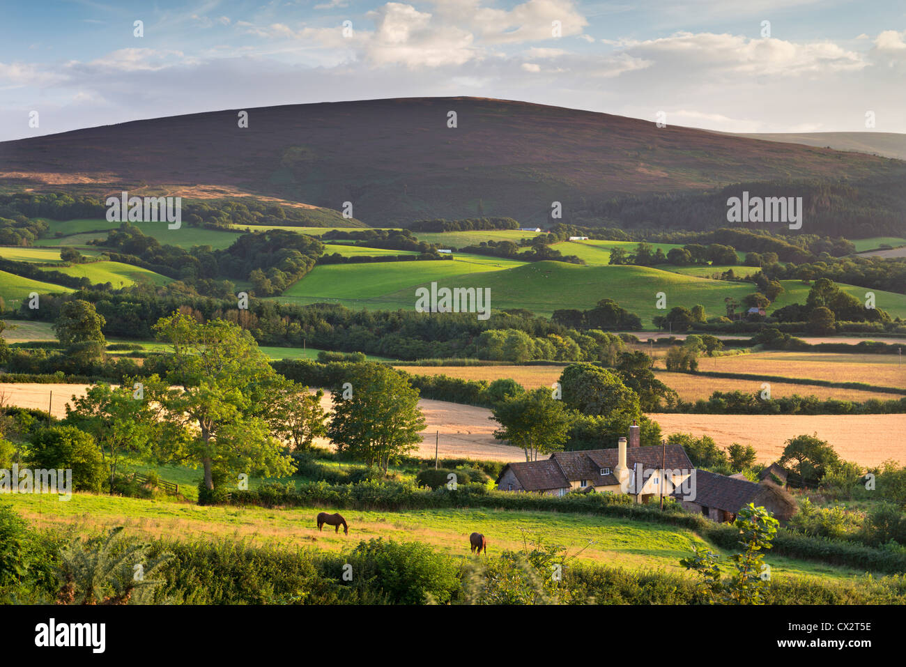 Farmhouse surrounded by rolling Exmoor countryside, Somerset, England. Summer (August) 2012. - Stock Image