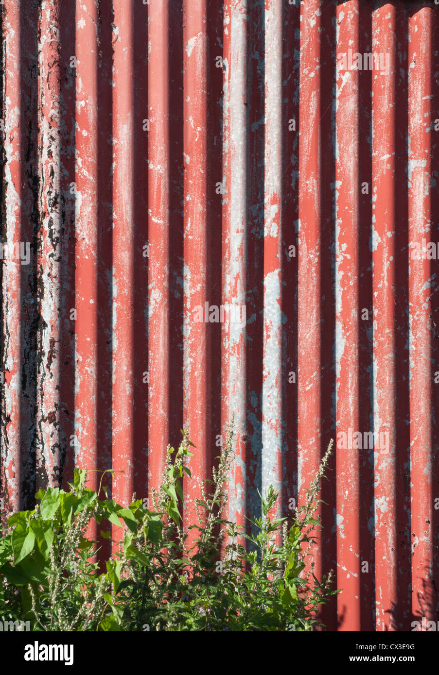 Corrugated Sheeting Stock Photos Amp Corrugated Sheeting