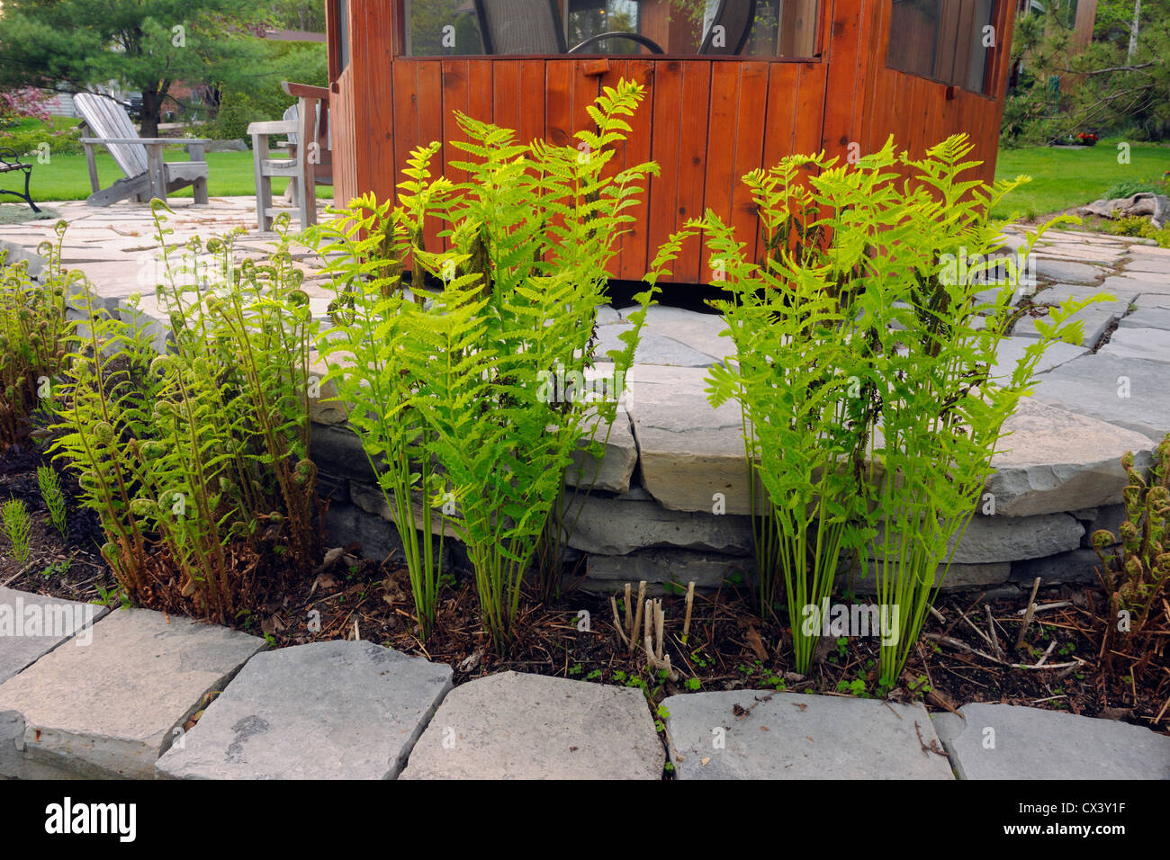 Residential Gardens In Early Spring Stone Walls And Ferns Greater Sudbury Ontario Canada