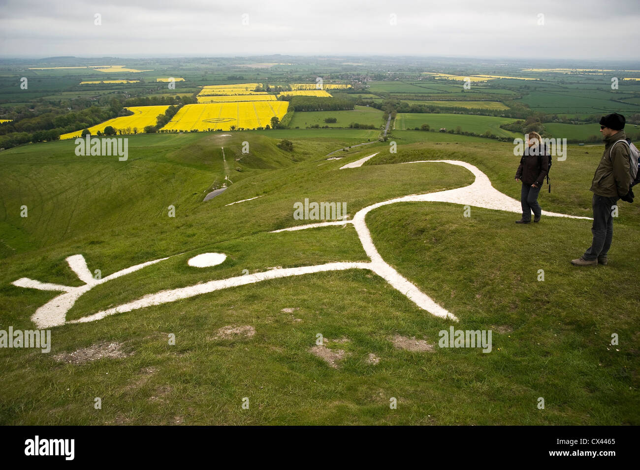 The Uffington White Horse The Manger And Dragon Hill On The Stock Photo Alamy