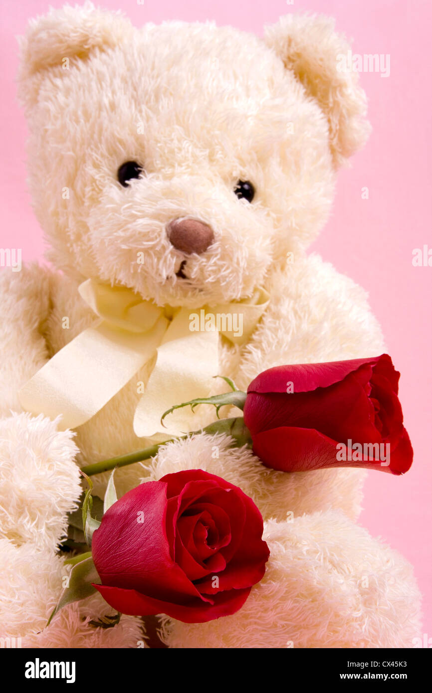 Teddy bear red rose stock photos teddy bear red rose stock images valentine concept a beautiful bear with two red roses stock image izmirmasajfo