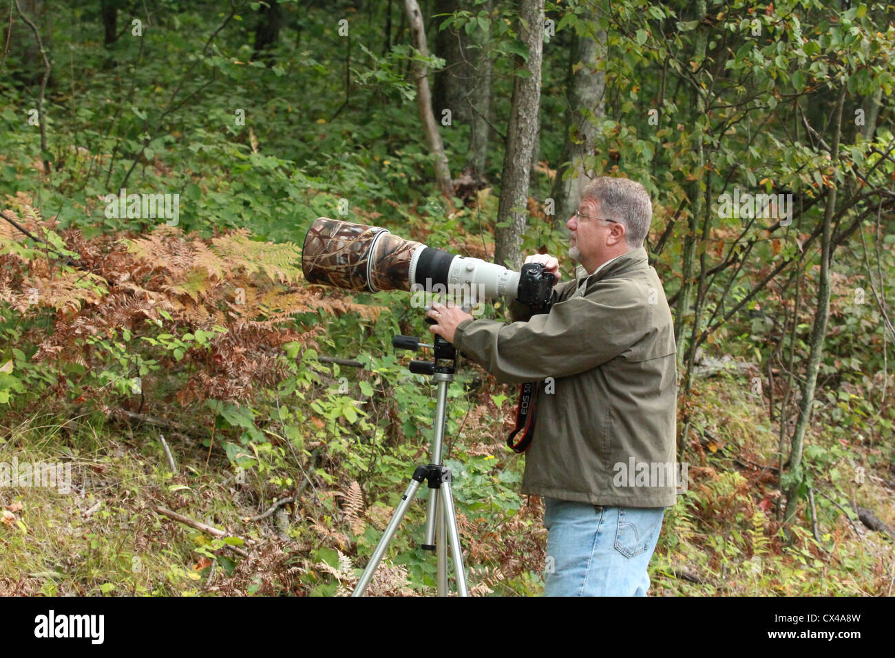 A professional photographer prepares to take a photo with a telephoto lens. - Stock Image