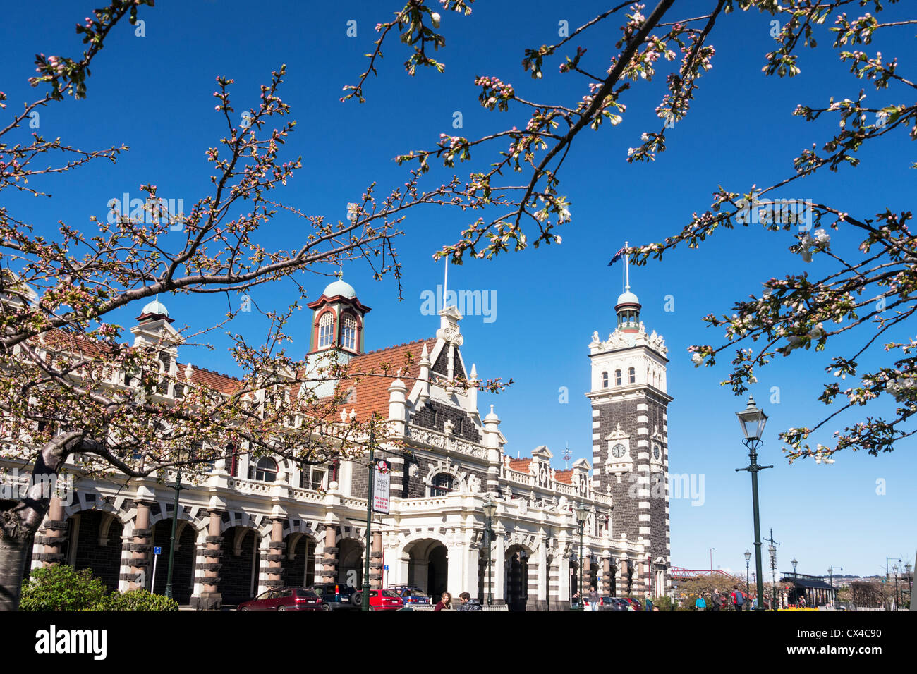 Dunedin Railway Station and spring blossom. - Stock Image