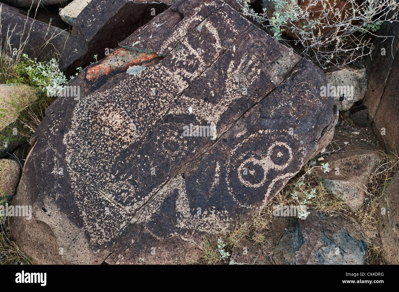 Jornada Mogollon style rock art at Three Rivers Petroglyph Site, Chihuahuan Desert near Sierra Blanca, New Mexico, - Stock Image