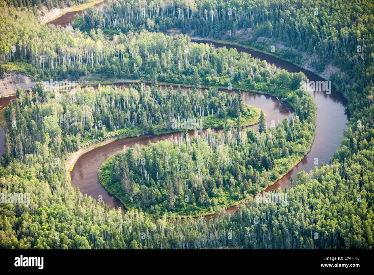 Boreal forest in Northern Alberta, Canada near Fort McMurray. - Stock Image