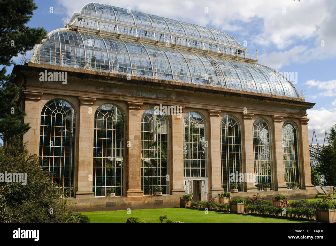 Royal Botanic Garden Edinburgh, Glasshouse. - Stock Image