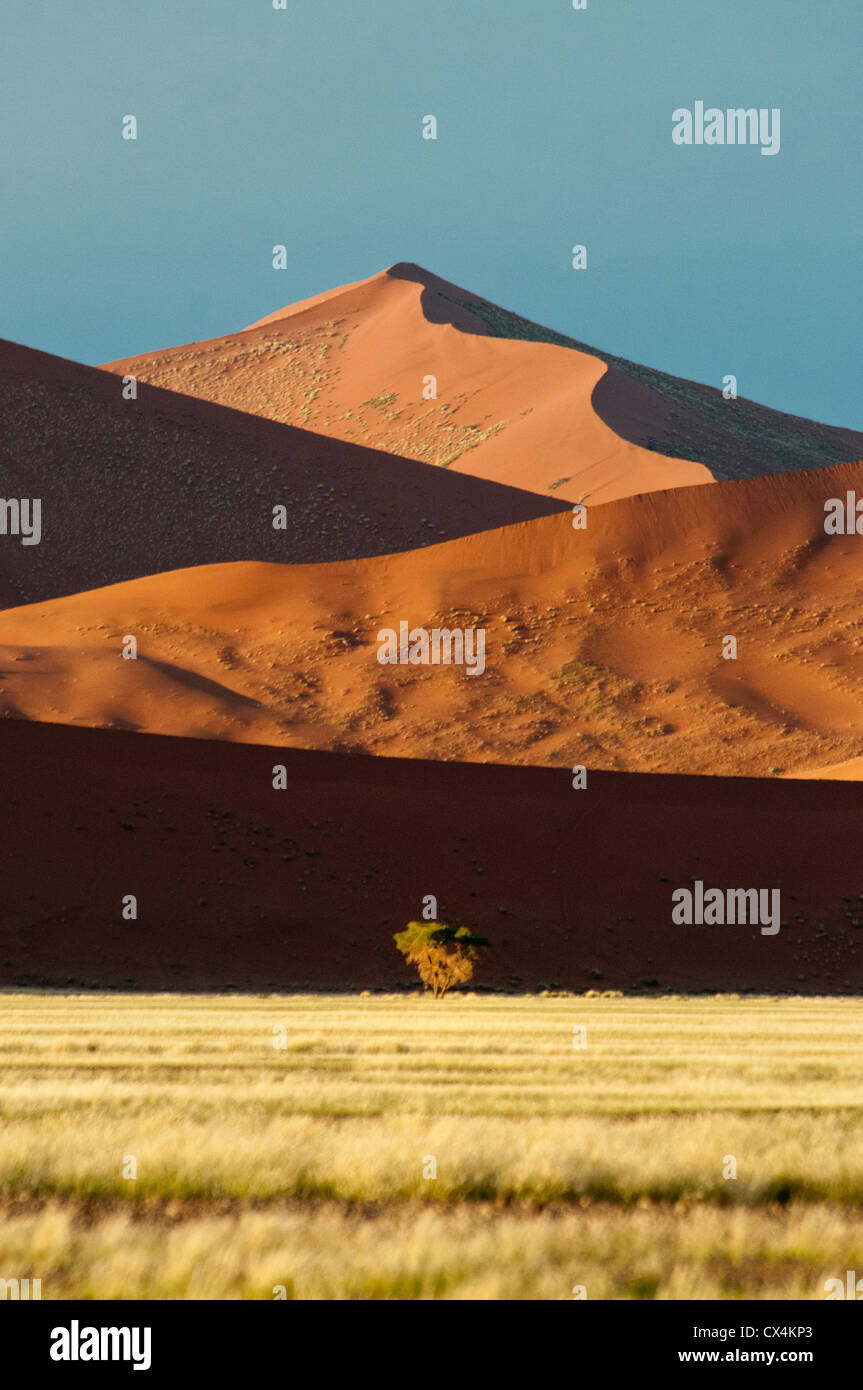 Red Sand Dunes, Nabib-Naukluft National Park, Namib Desert, Sossusvlei, Namibia Africa - Stock Image