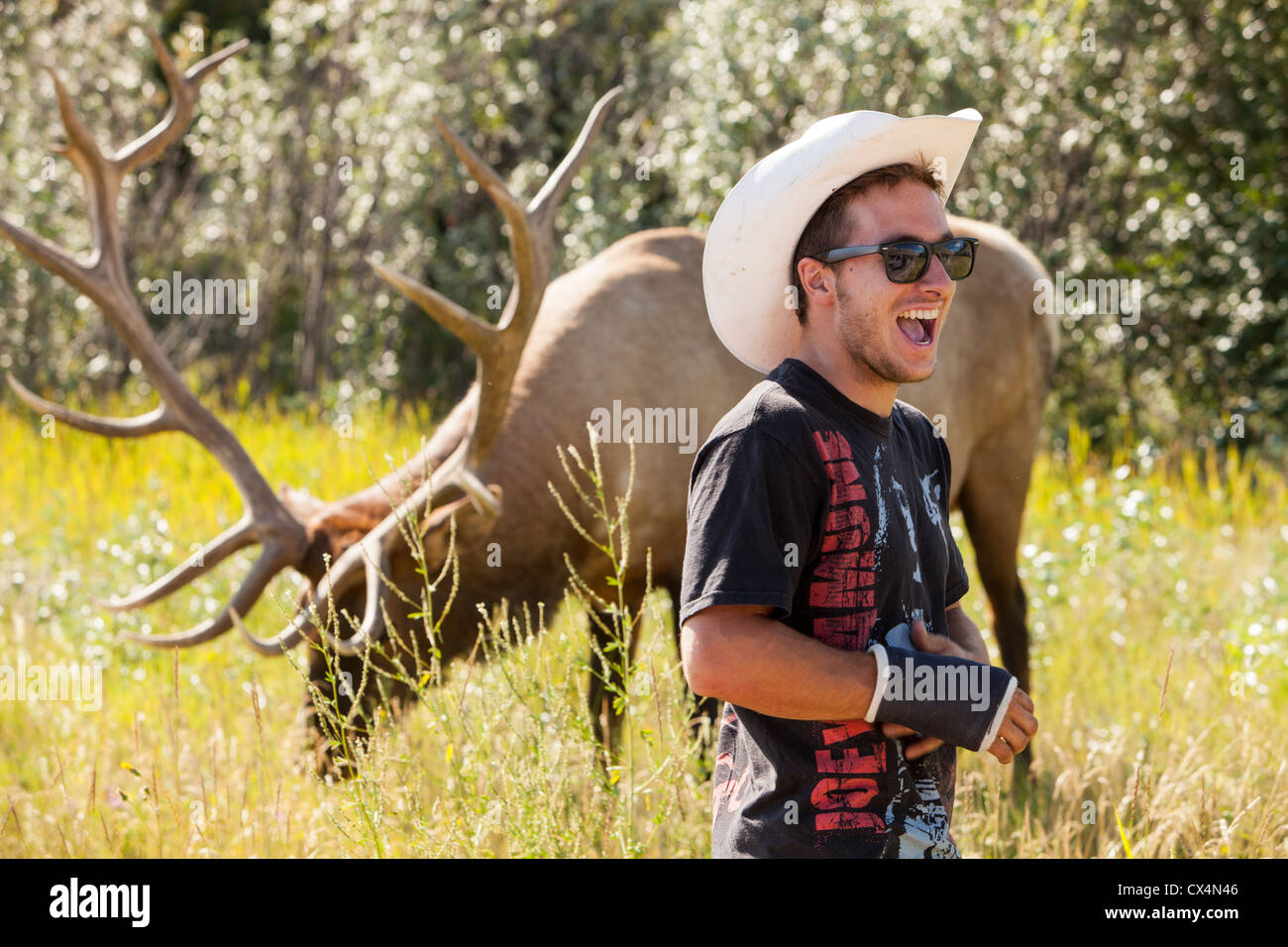 A tourist with a tame Elk in the Canadian Rockies near Jasper. - Stock Image