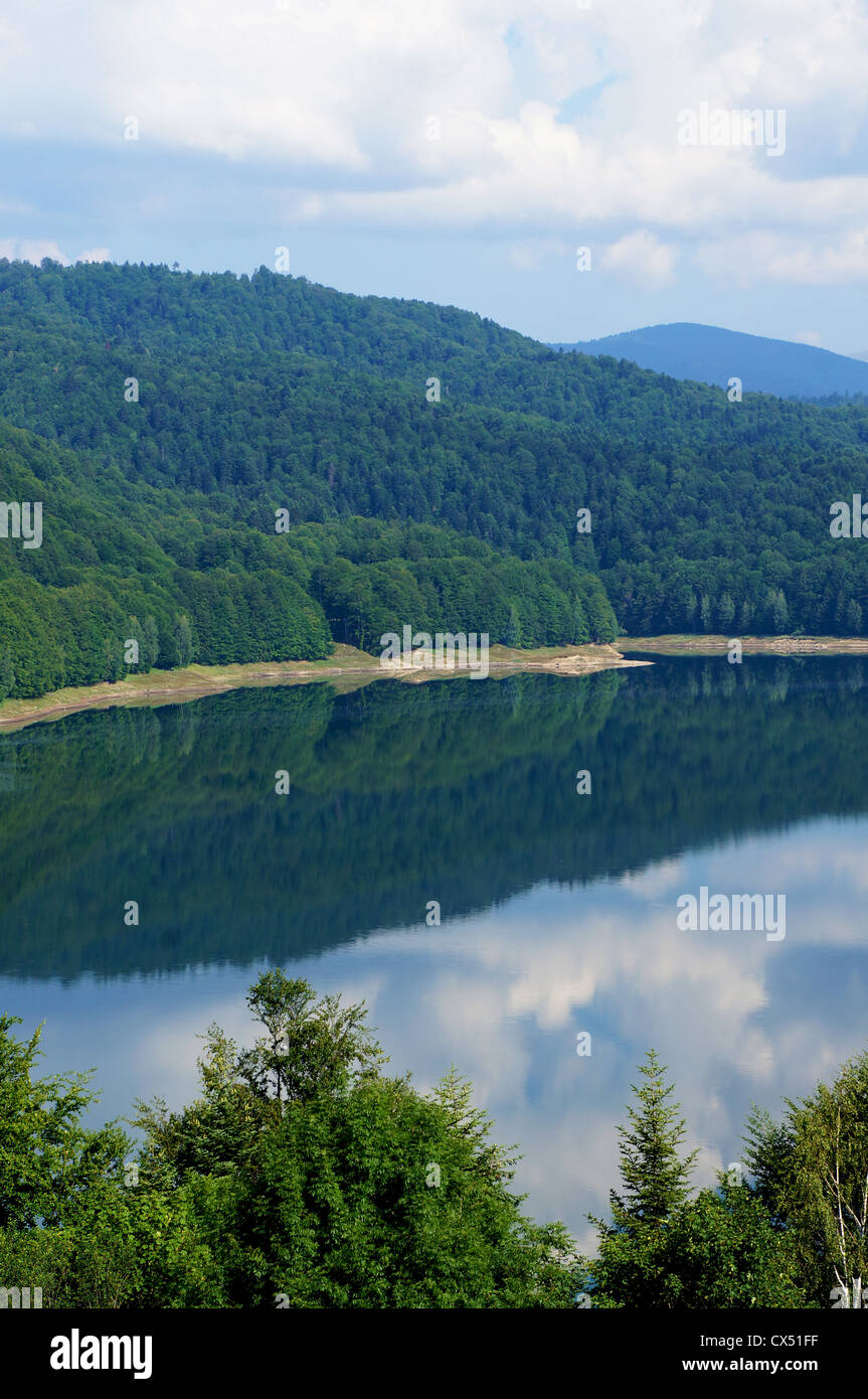 Panorama view of the Vidraru lake in Fagaras mountains of Romania with black swallows flying over the water Stock Photo