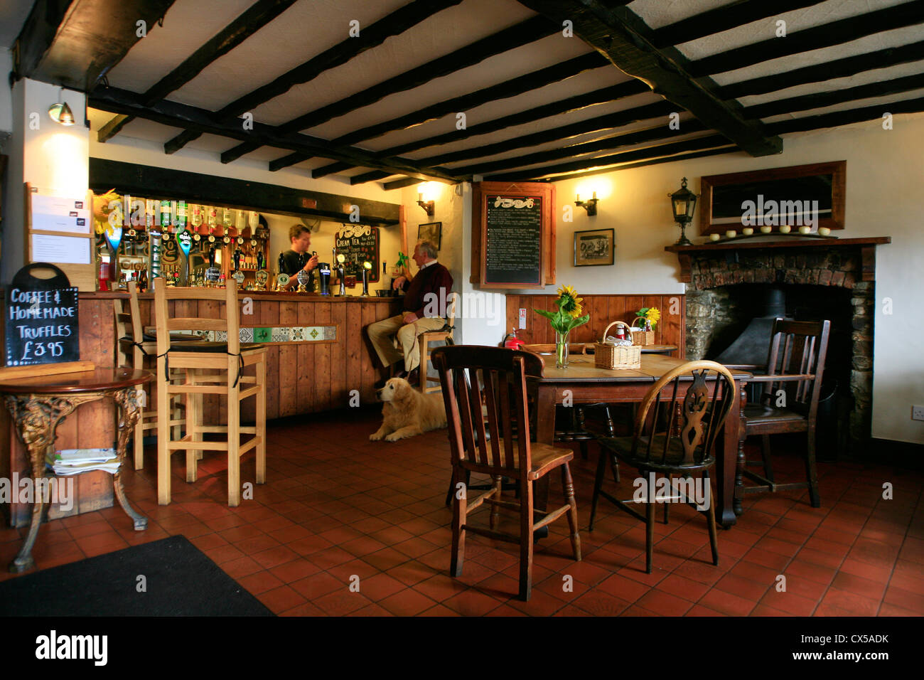 English country pub scene man and dog at bar, wooden beams ceiling - Stock Image