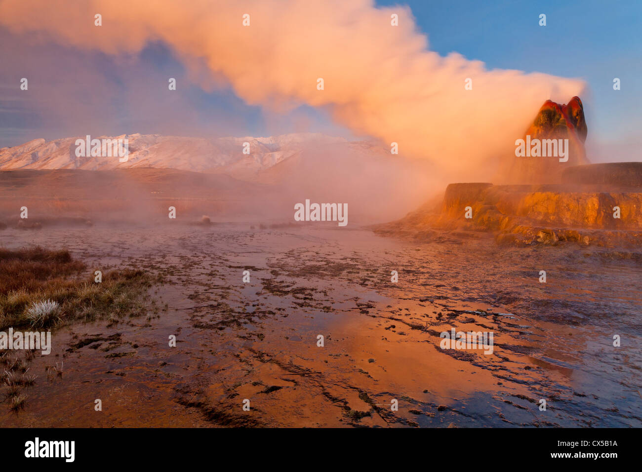 Fly Geyser in the Black Rock Desert near Gerlach, Nevada, USA Stock Photo