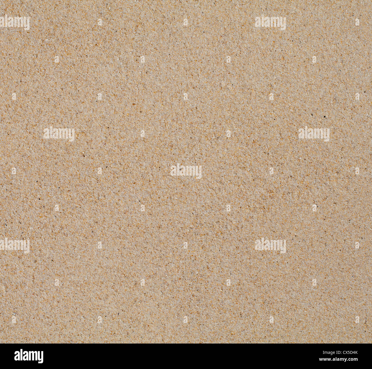 Dry clean beach sand background texture - Stock Image