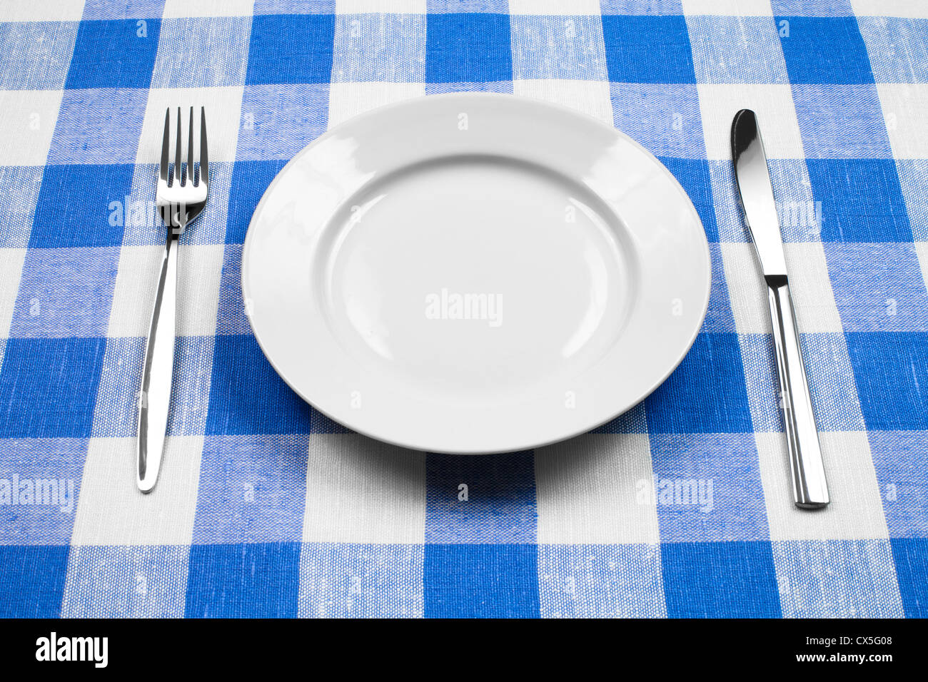 Knife, White Plate And Fork On Blue Checked Tablecloth   Stock Image