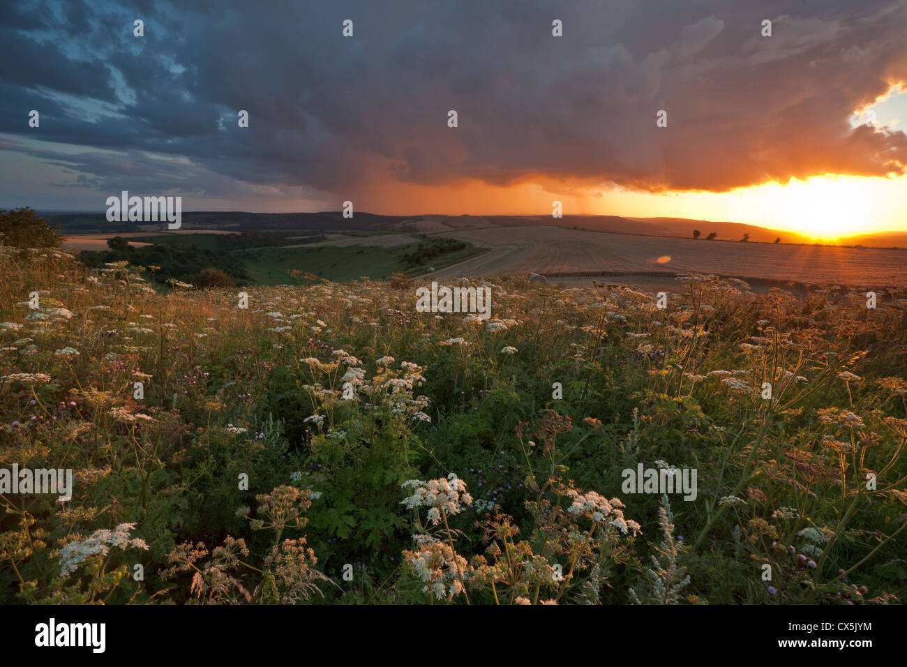 Summer storm on the South Downs, West Sussex, England. - Stock Image