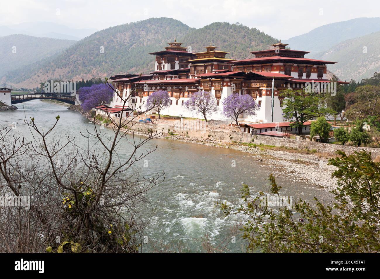 punakha monastery - Stock Image