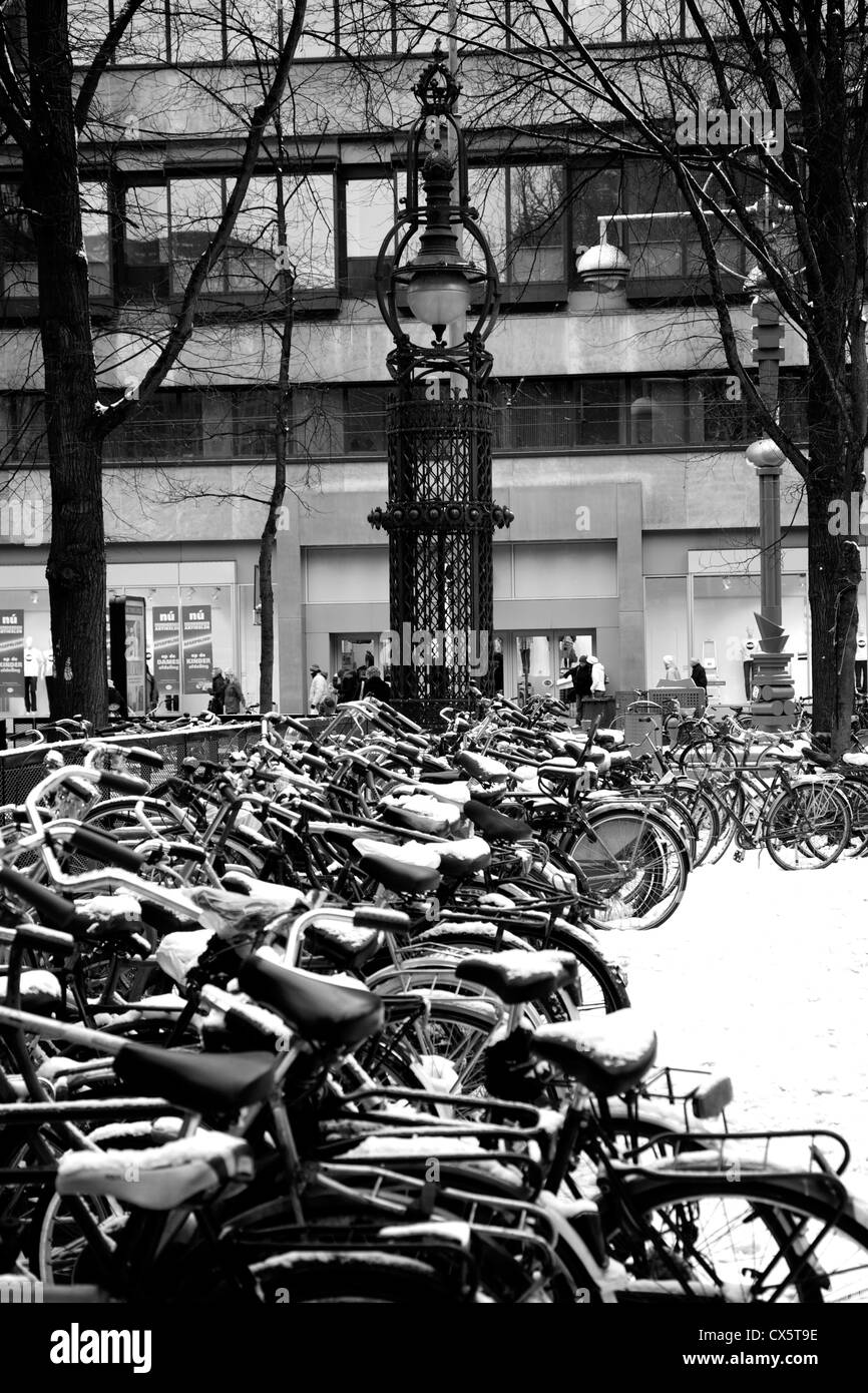 Bicycles parked in Amsterdam - Stock Image