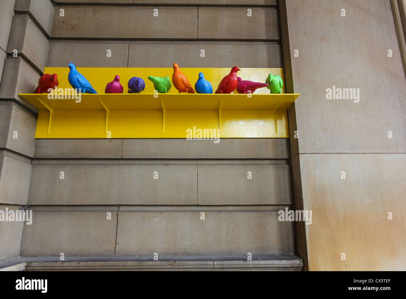 Some of the 150 brightly coloured birds outside the Walker Art Gallery in Liverpool as part of the 2012 Biennial. - Stock Image