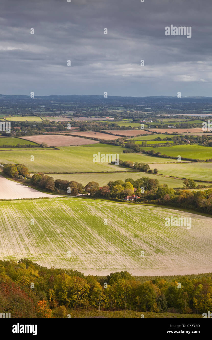 The rolling fields of the South Downs in southern England. - Stock Image