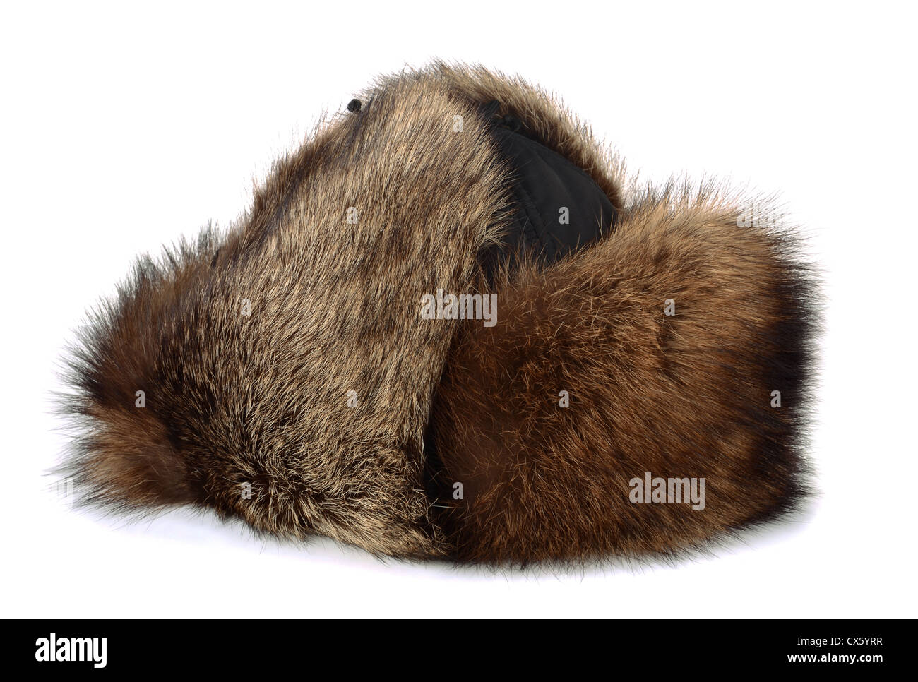 Winter raccon fur hat isolated on white - Stock Image