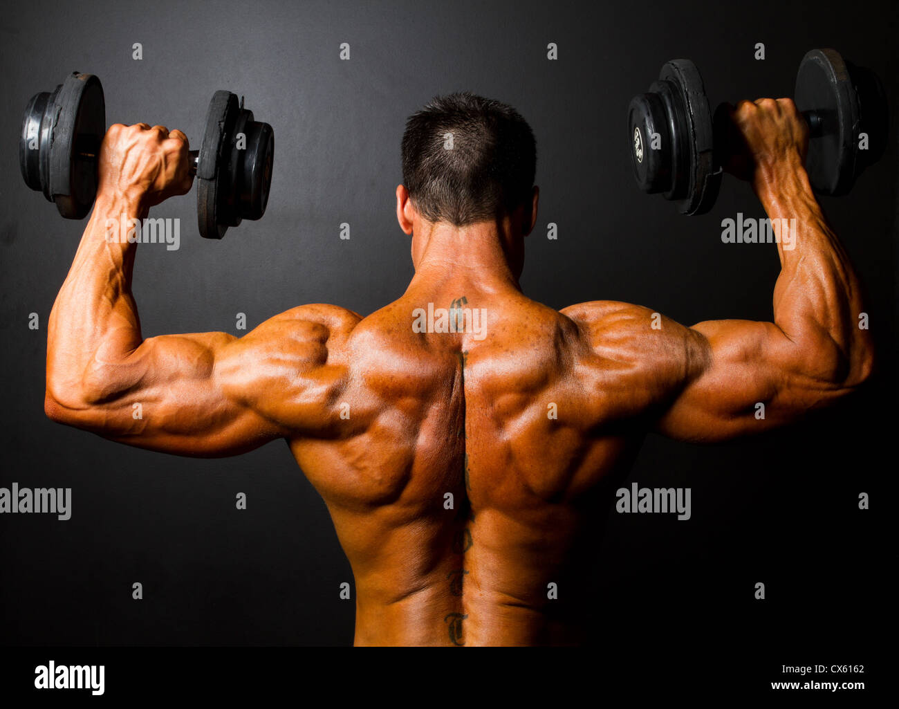 rear view of bodybuilder training with dumbbells on black background - Stock Image