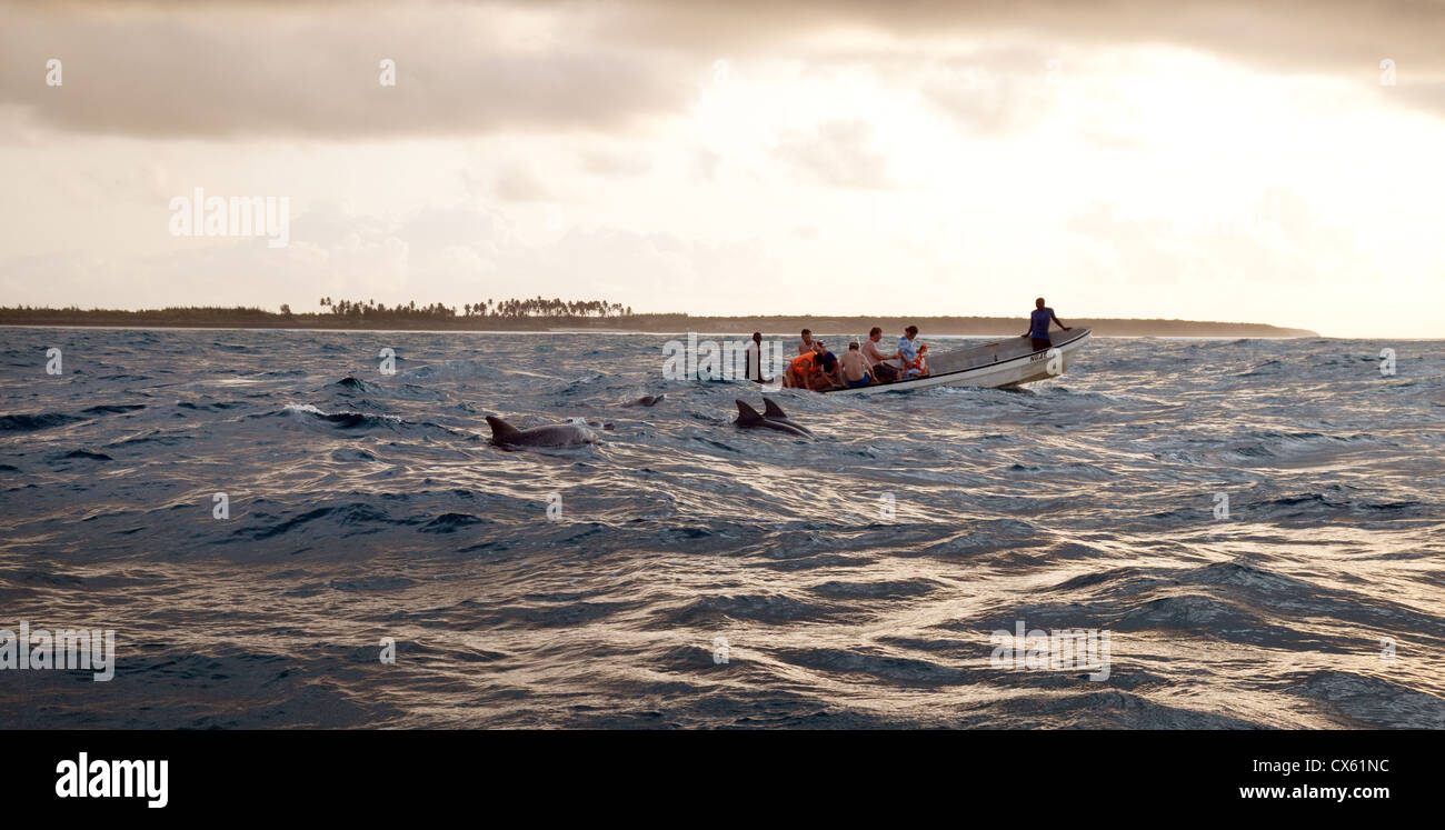 Tourists watching dolphins swimming in the Indian Ocean, Zanzibar Africa - Stock Image