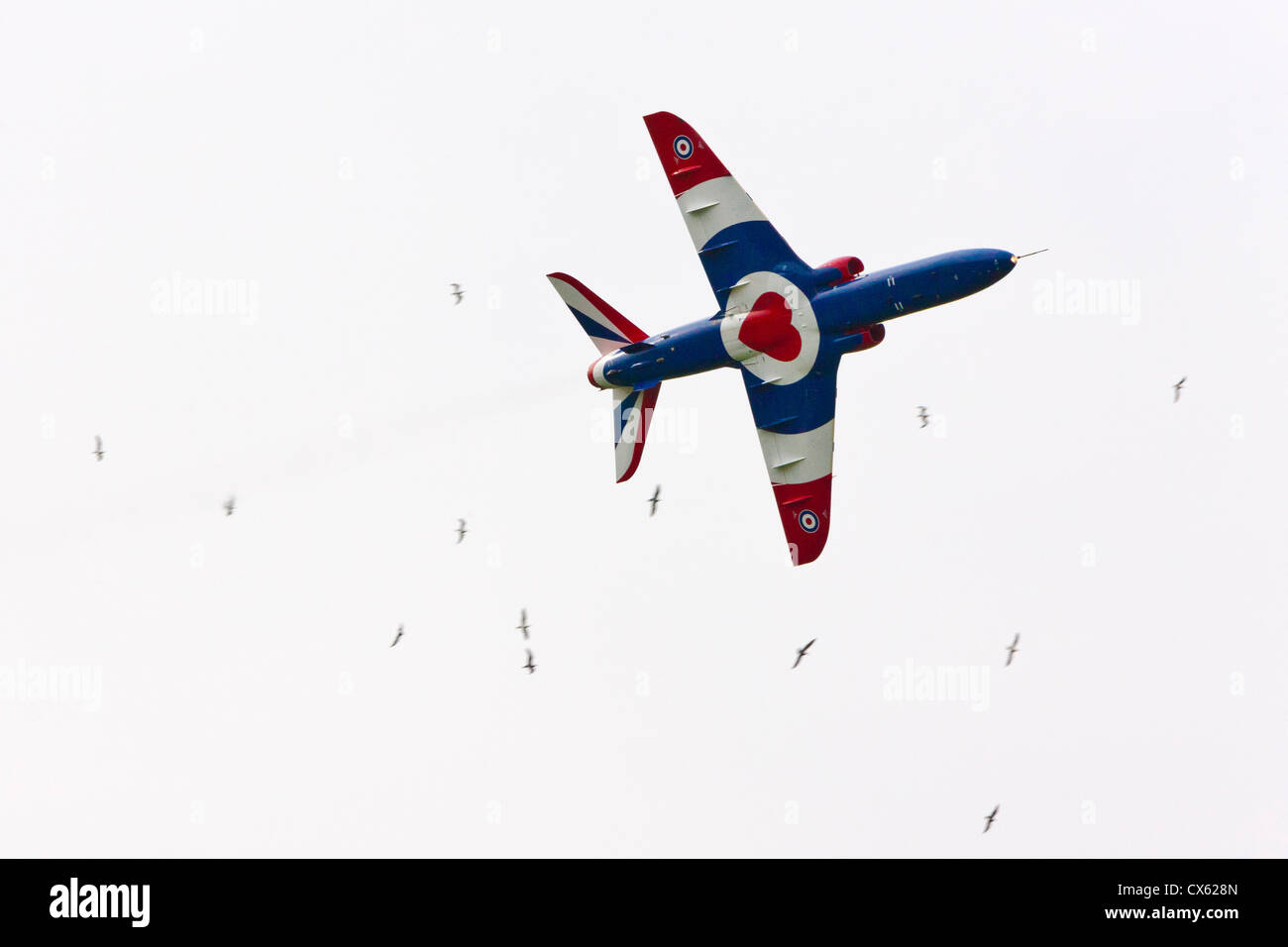 Red Arrows Hawk aircraft in RAF Benevolent Fund colours at Best of British Show, Cotswold (Kemble EGBP) Airport. - Stock Image