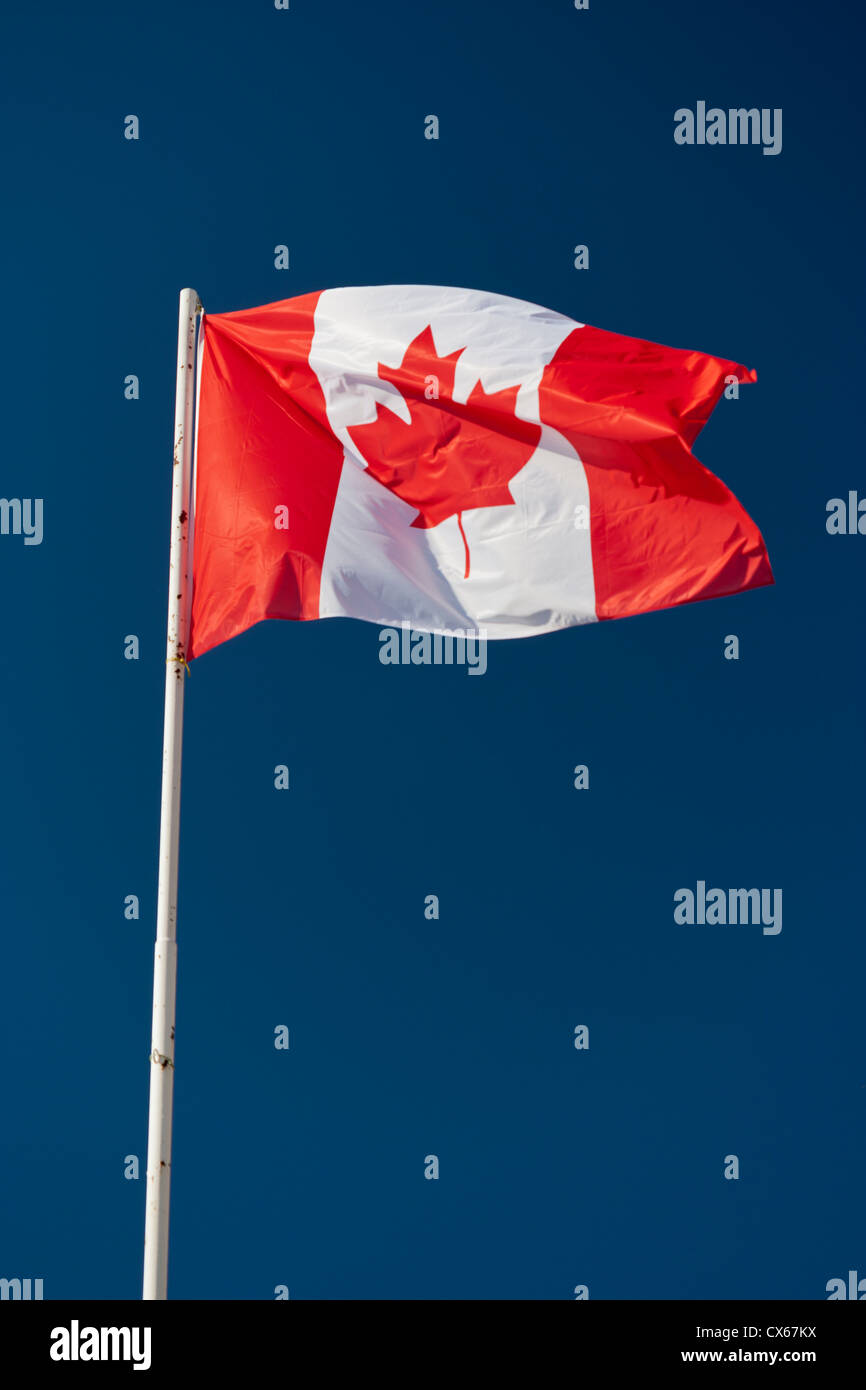 Canadian flag on a flagpole fluttering in the wind. - Stock Image