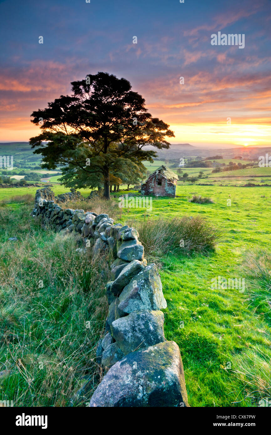 Old Abandoned Barn near Roach End, The Roaches, Peak District National Park, Staffordshire, England, UK - Stock Image