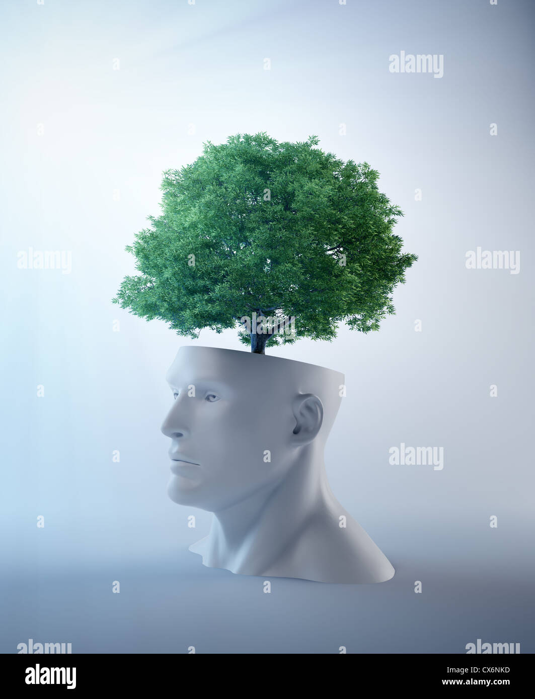 Tree growing out of an abstract head - creativity and psychology concept illustration  - Stock Image
