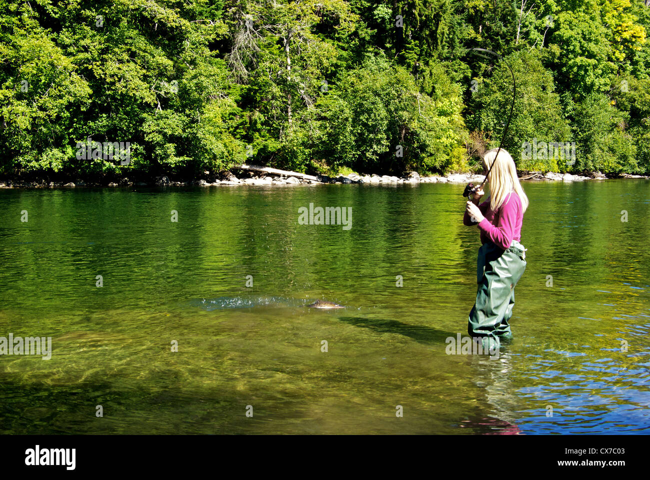 Young blond German woman catching pink salmon with spinning rod reel Campbell River BC Canada - Stock Image