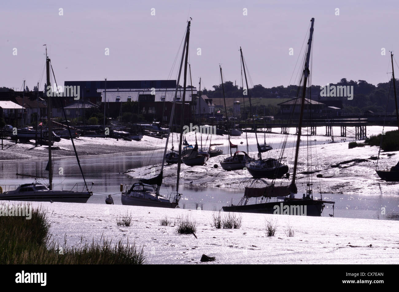 The River Colne at Wivenhoe Essex - Stock Image