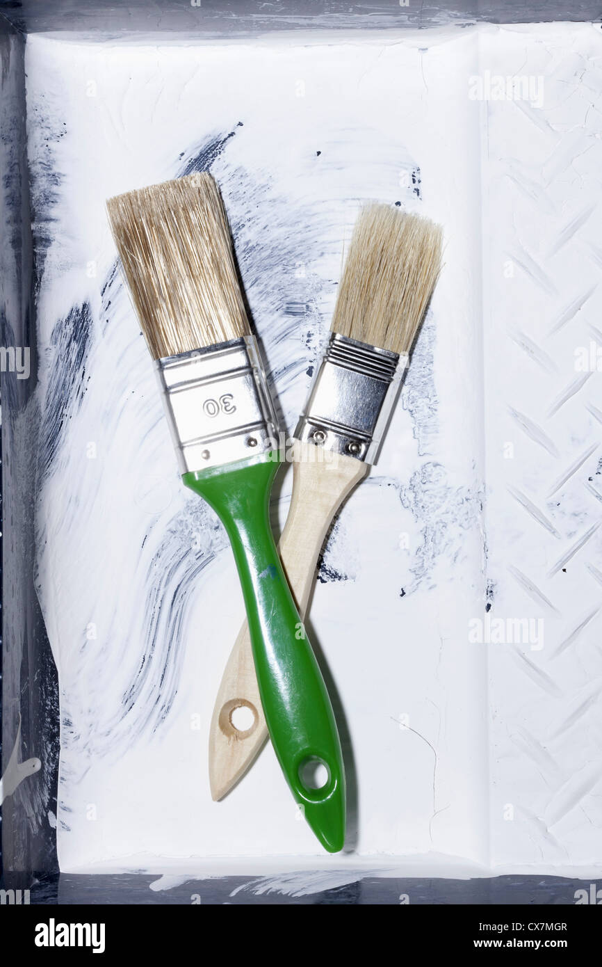 Two New House Painting Brushes Crossing Each Other And Lying In An Old Paint Tray