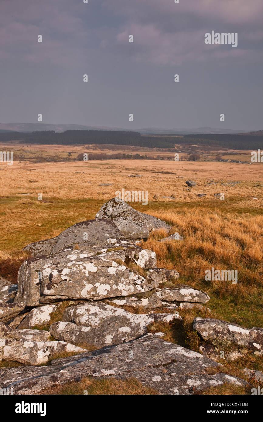 The moorlands of Dartmoor in Devon. - Stock Image