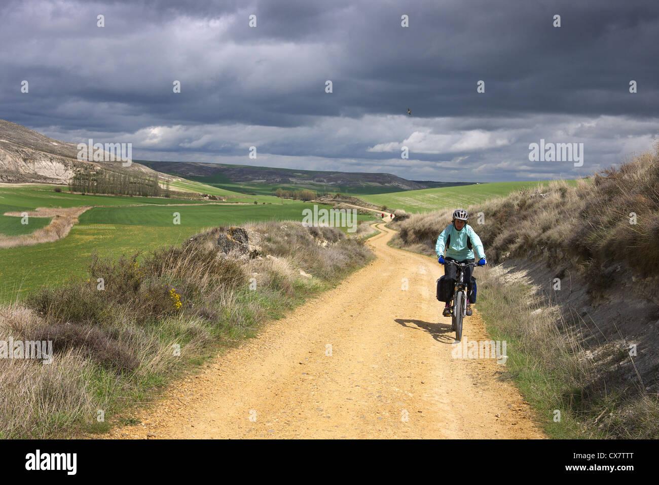 A pilgrim cycling the camino to Santiago in Castilla y Leon, Spain near Tardajos. - Stock Image
