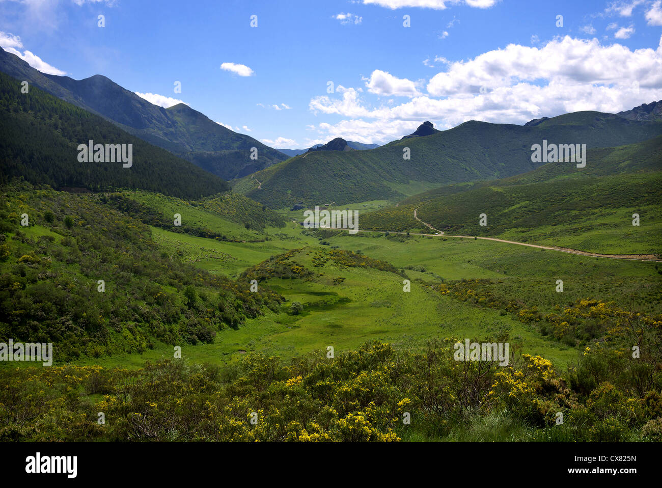 Countryside near the Puerto de San Gloria in the Picos de Europa, Spain. - Stock Image