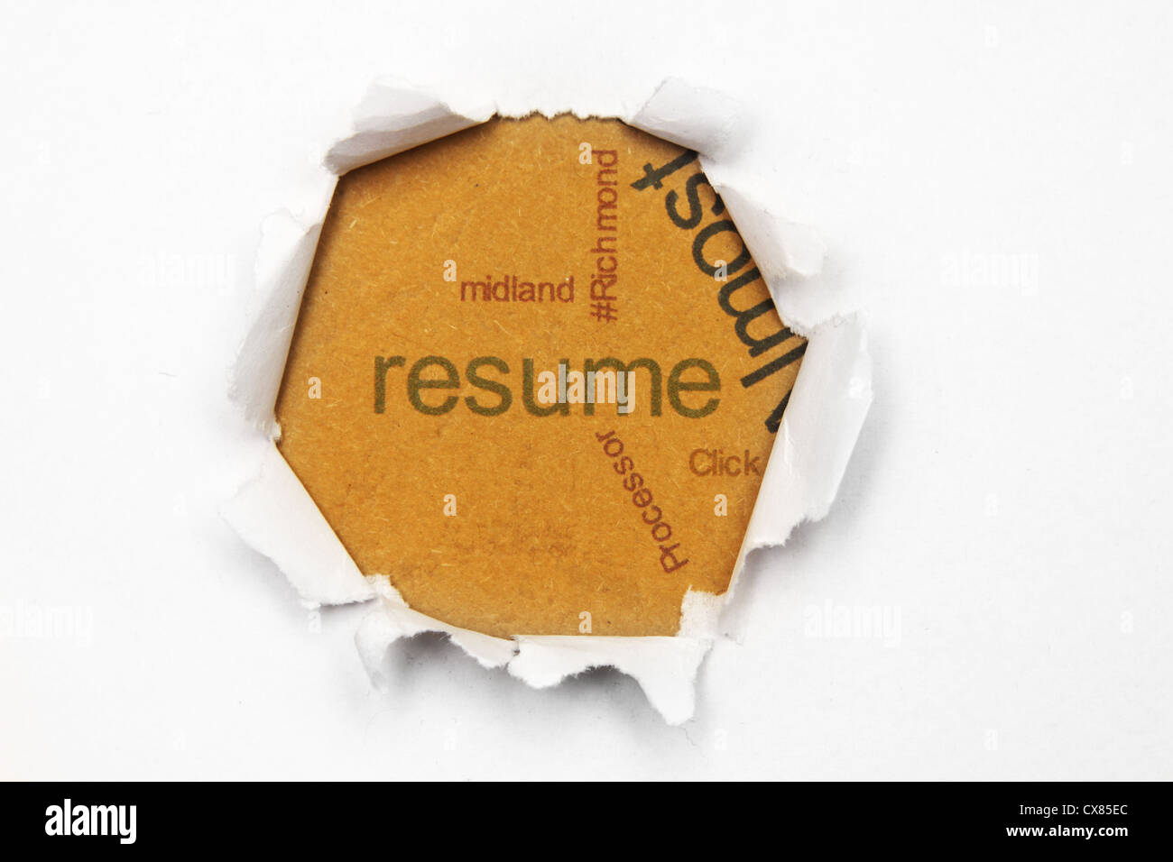 Resume Text On Paper Hole Stock Photo 50581732 Alamy