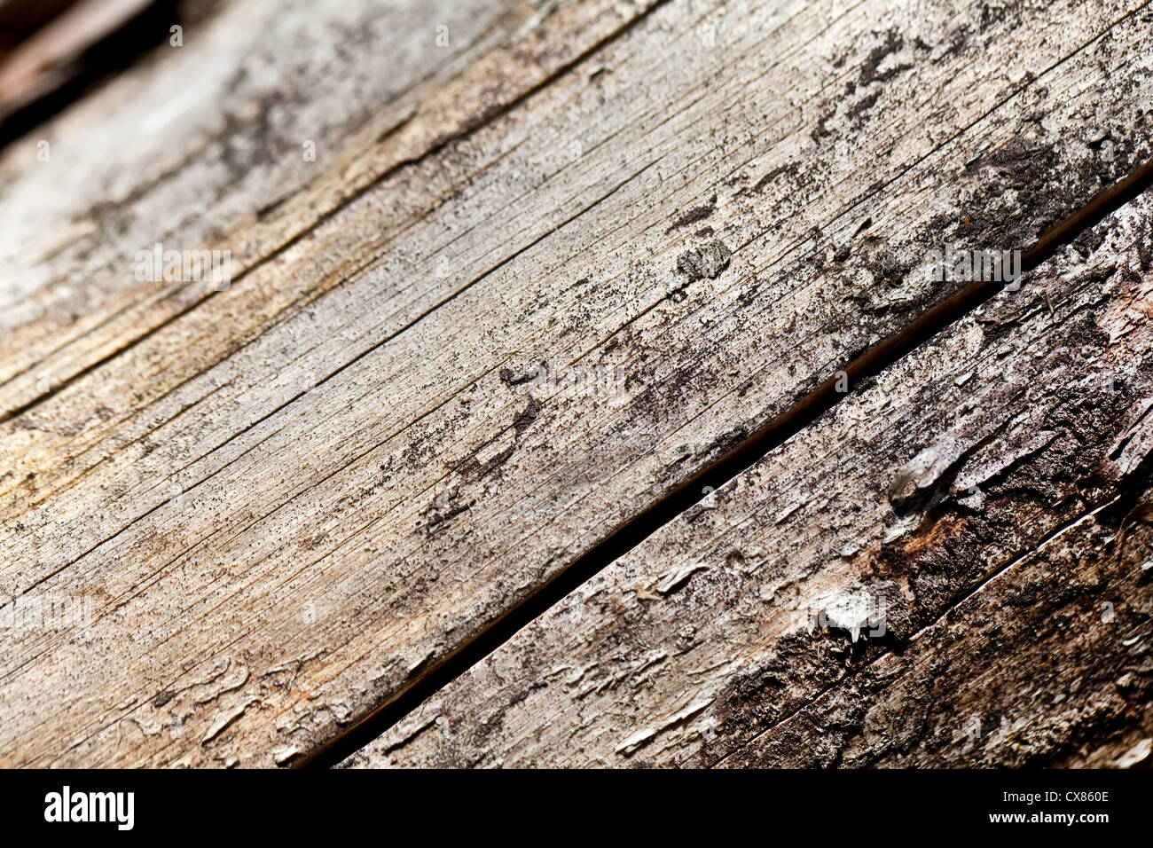 Old grey wooden texture - Stock Image