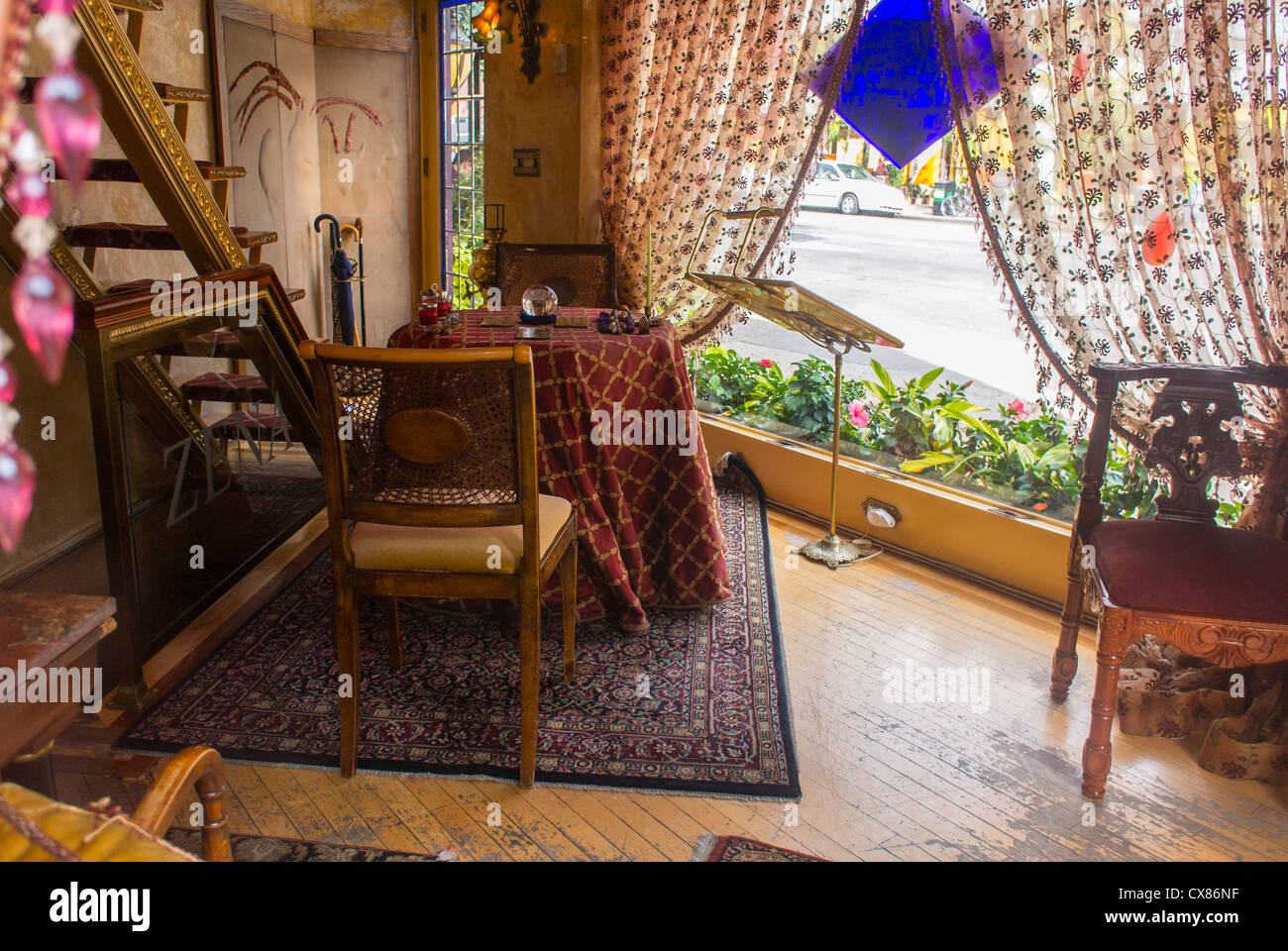 New York City Ny Usa Greenwich Village Fortune Teller Shop On