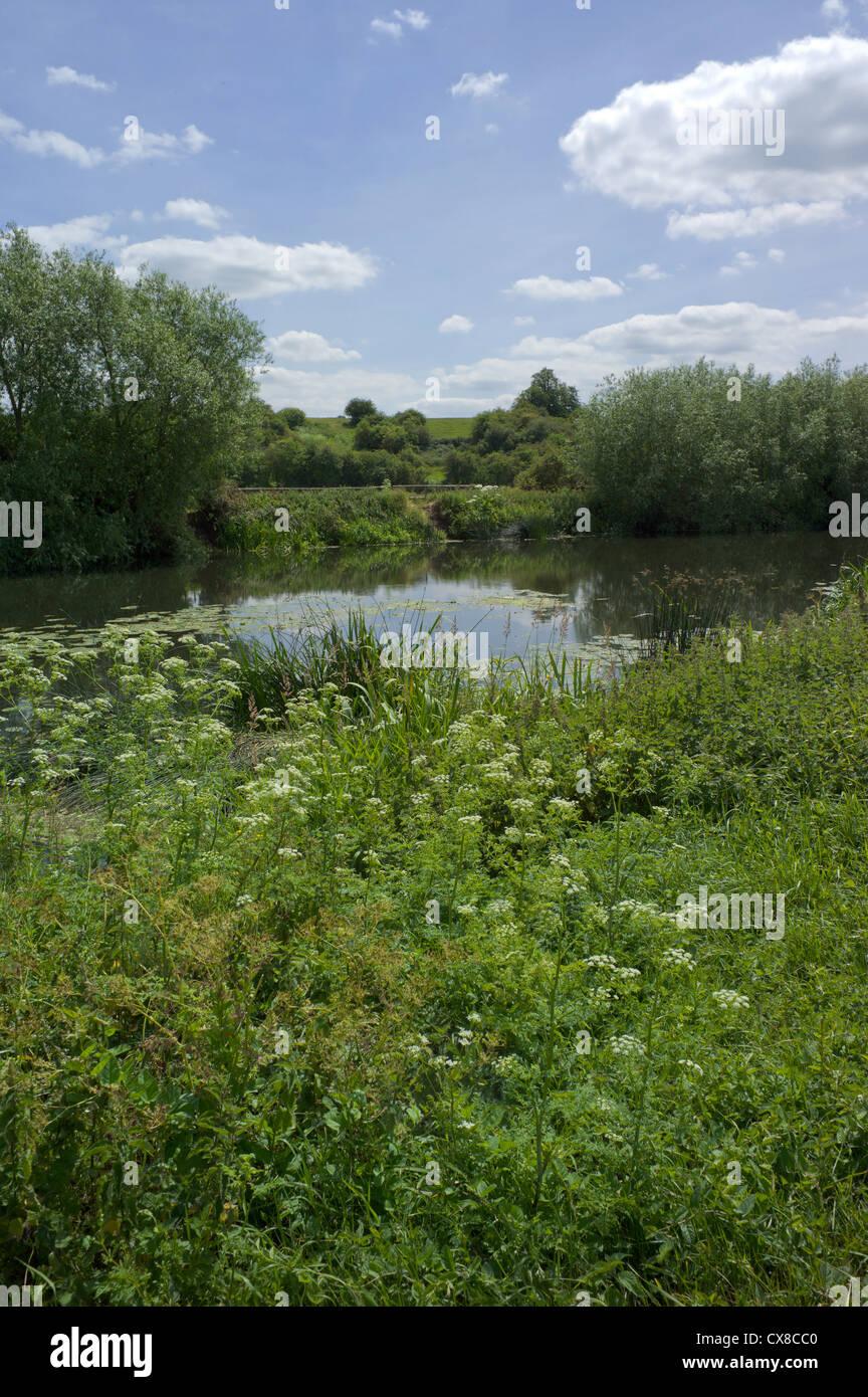 river avon stratford-upon-avon warwickshire england uk - Stock Image