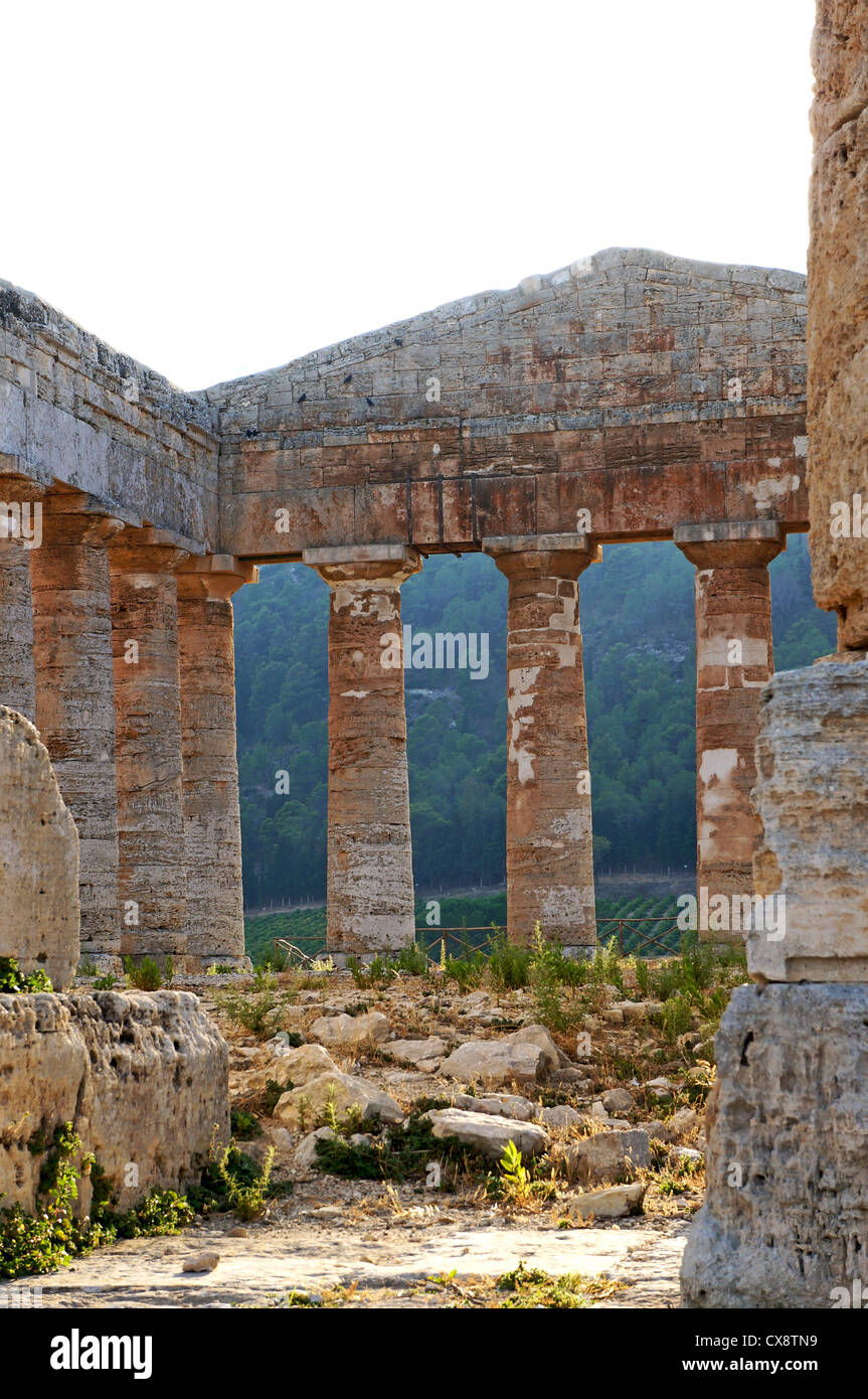 Internal view of the Segesta temple with its pediment and monumental columns - Stock Image