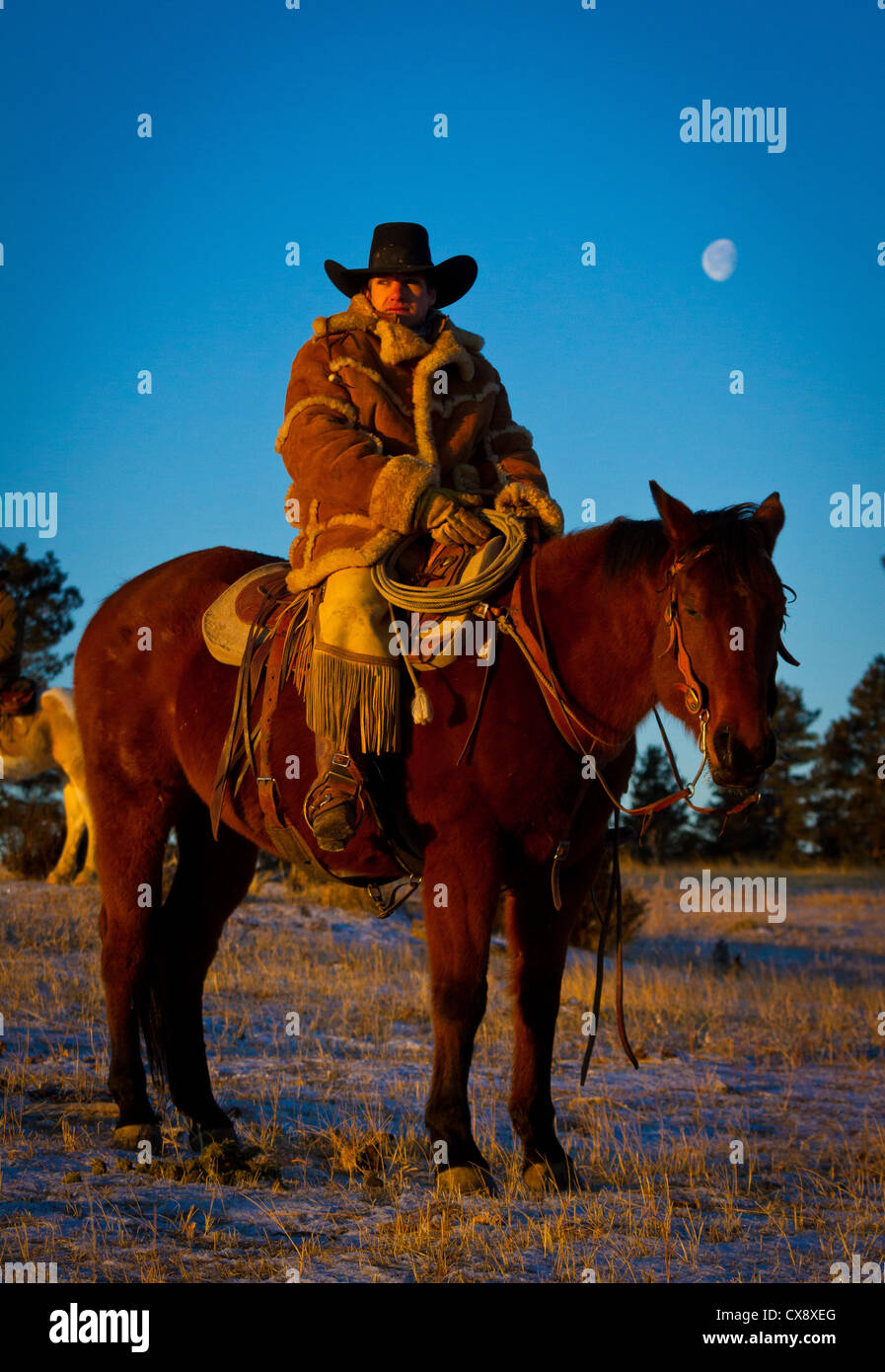 Cowboy on his horse on a ranch in northeastern Wyoming Stock Photo