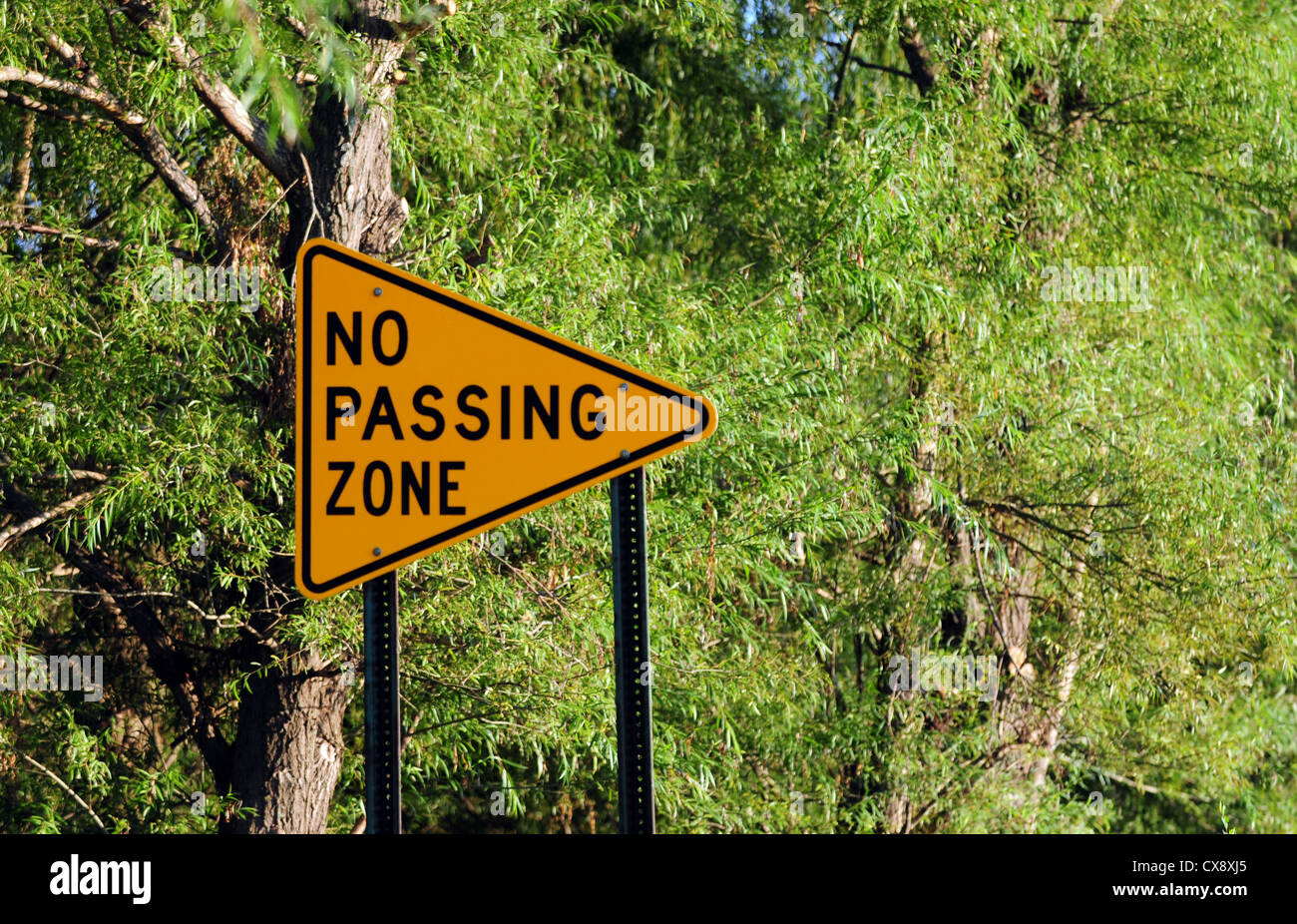 No passing zone traffic sign in nature - Stock Image